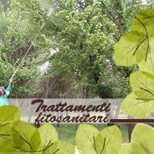 trattamento fitosanitario2